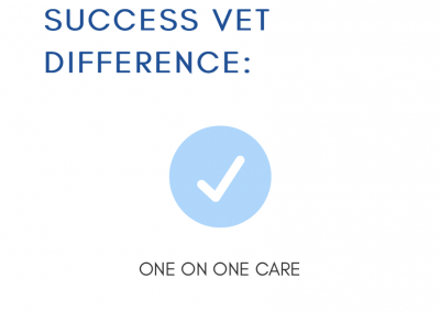 Mobile Vet page